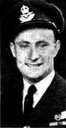 1 WAGS - BROWN William Haig - 416948